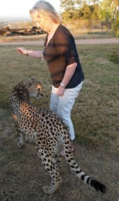 Leopard Encounter